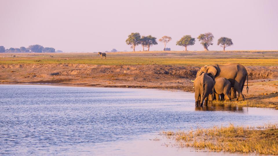 NAMIBIA: OBIETTIVO SAFARI!